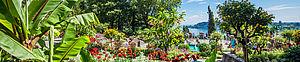 Gärten in Radolfzell
